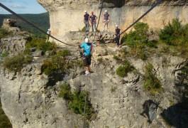 Pont De Singe Dans La Via-ferrata Du Liaucous, Près Des Gorges Du Tarn, Dans L'Aveyron